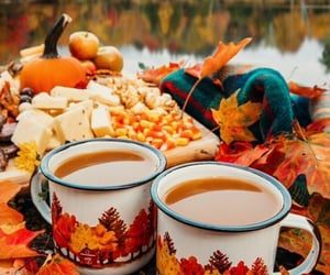 autumn, chill, and orange image