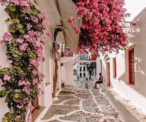 Mykonos, Greece 🇬🇷