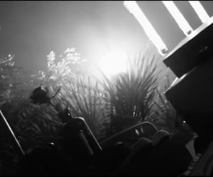 black and white, music video, and gray image