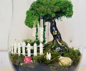 fairy garden diy kit image