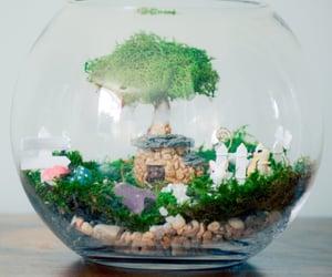 fairy garden kit image