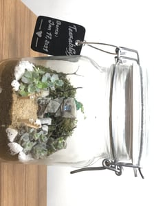 home decor, indoor plant, and plant image