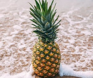 FRUiTS, beach, and summer image