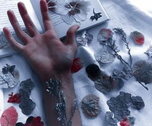 aesthetic, hand, and leaf image