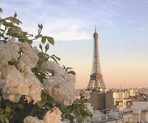 flowers, paris, and france image