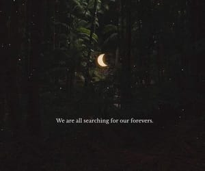 aesthetic, moon, and forest image