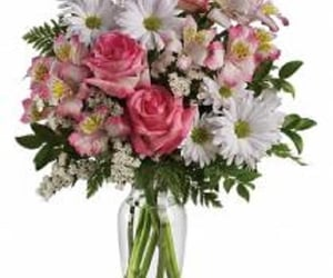 florist, hamilton, and flower delivery image