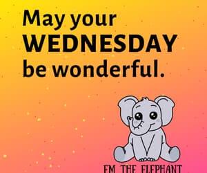 bffs, elephant, and wednesday image