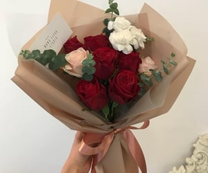 red, rose, and roses image