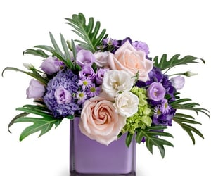flower delivery, florist, and hanover image
