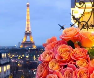 beautiful, france, and paris image