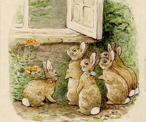 beatrix potter, book, and bunny image
