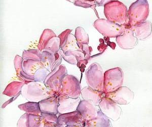art, flowers, and floral image
