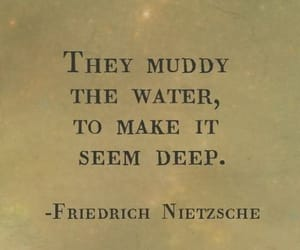 friedrich nietzsche, they muddy the water, and seems deep image