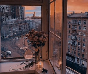 view, flowers, and sunset image