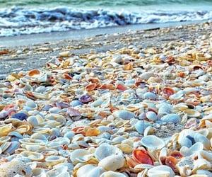 beach, summer, and verano image