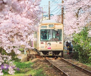 adventure, green, and japan image