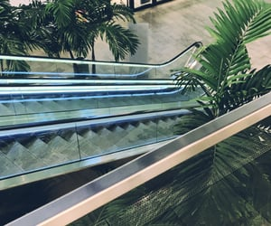 botanical, city, and mall image