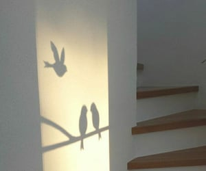 birds, aesthetic, and shadow image