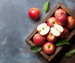 apples, fruit, and tray image