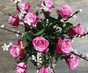 bouquet, roses, and blossem image