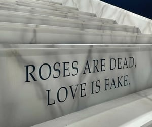 rose, quotes, and blackpink image