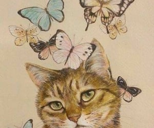 animals, mariposas, and butterfly image