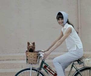 bike, audrey hepburn, and light blue image