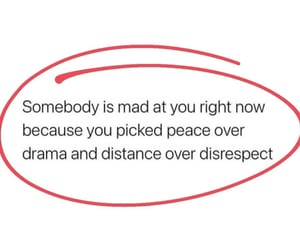 drama, mad, and quote image