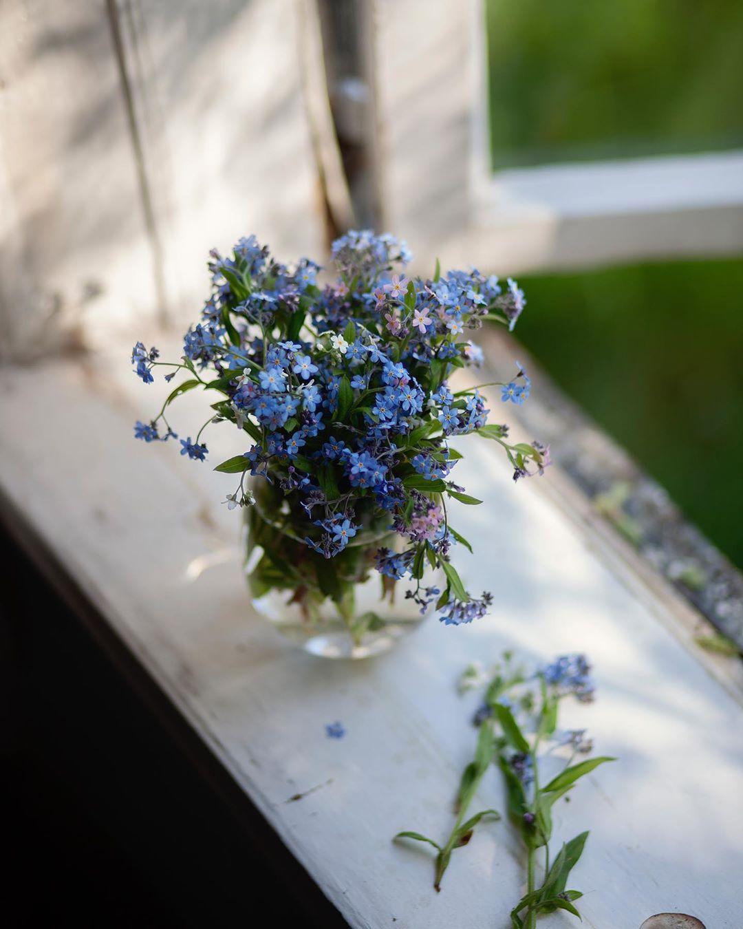 april, cottage, and floral image