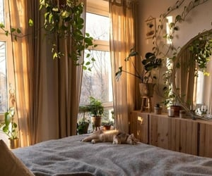 plants, bedroom, and cat image