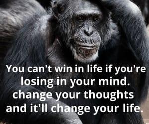goals, mind, and purpose image
