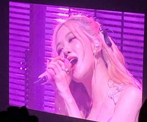 concert, lq, and rose image