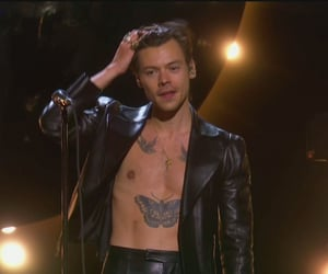 Harry Styles, grammys, and gucci image