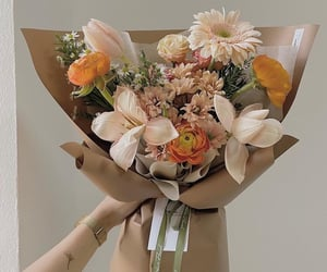 beige, bouquet, and daisy image