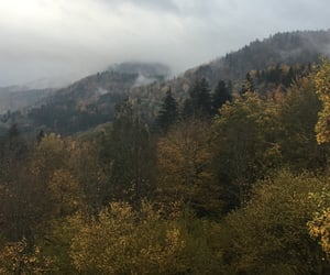 fall, moutain, and automne image