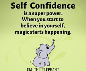 confidence, elephant, and inspiring image