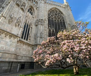 spring, duomo, and gothic image