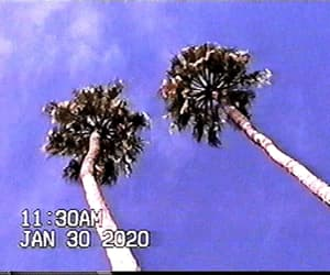 aesthetic, california, and gif image