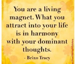 law of attraction, manifestation, and manifest image