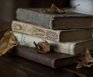 book, autumn, and vintage image