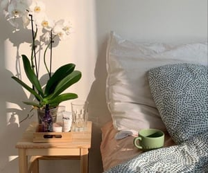 bedroom, coffee, and home image