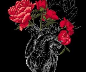 amor, arte, and belleza image