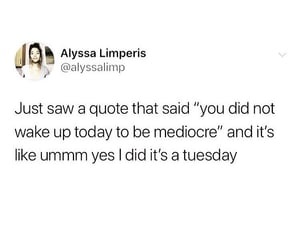 funny, quote, and tuesday image