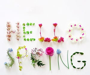 quotes, spring, and spring quotes image