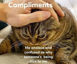 anxious, compliments, and confused image