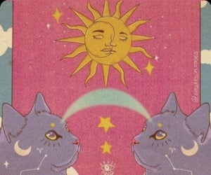 energy and cat image