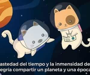 amor, frases, and tierno  image
