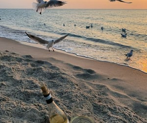 aesthetics, sea, and sunset image