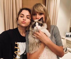 Taylor Swift, selena gomez, and cat image